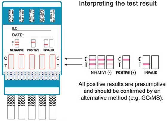 5 panel drug test