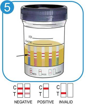 5 Panel Drug Test Cup Kit
