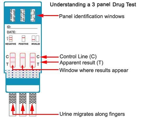 3 panel drug test
