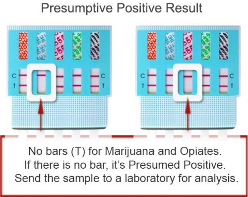What is a Urine Drug Test Kit