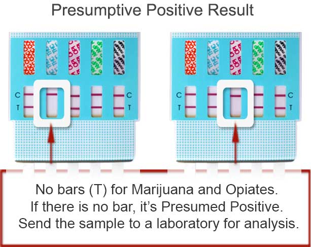 Drug test instructions - positive result
