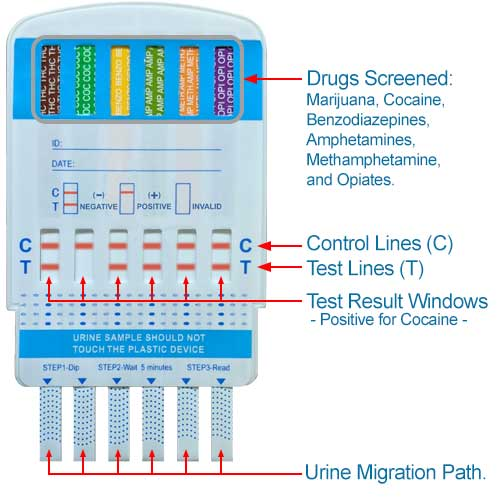 12 Panel Drug Test with Alcohol