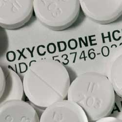 Drug of Abuse Oxycodone