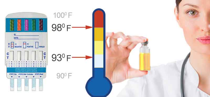 Urine Temperature check