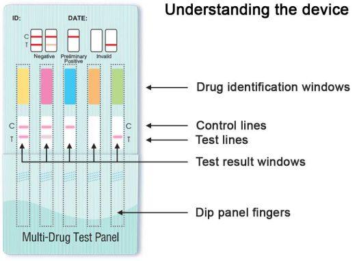 10 panel urine drug test