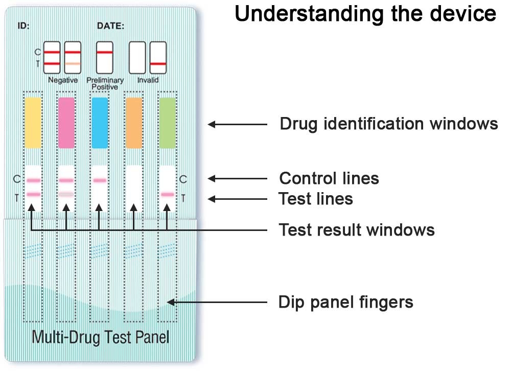 Understanding the 5 panel Drug Screen